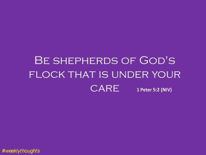 Be shepherds of God's flock.jpg