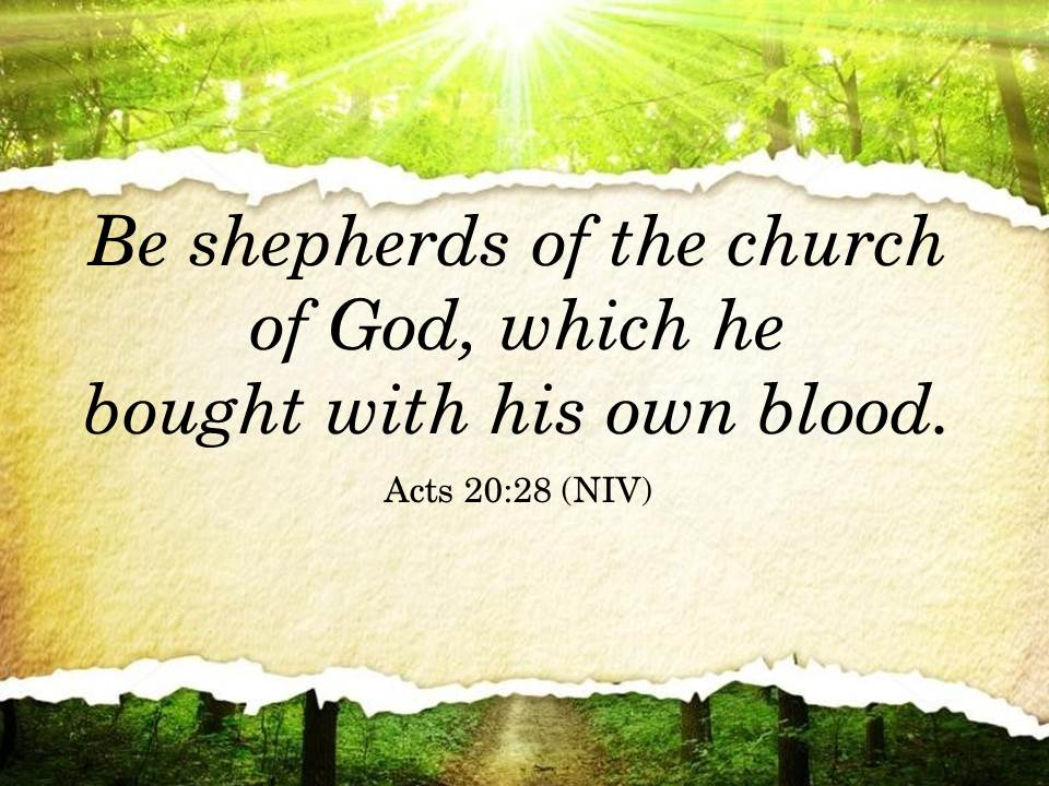 Be shepherds of the church of God,